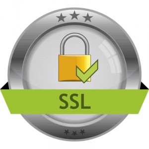 Transport Layer Security (TLS), Secure Sockets Layer (SSL)